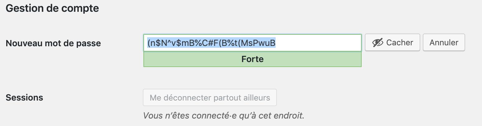 Mot de passe automatique dans WordPress